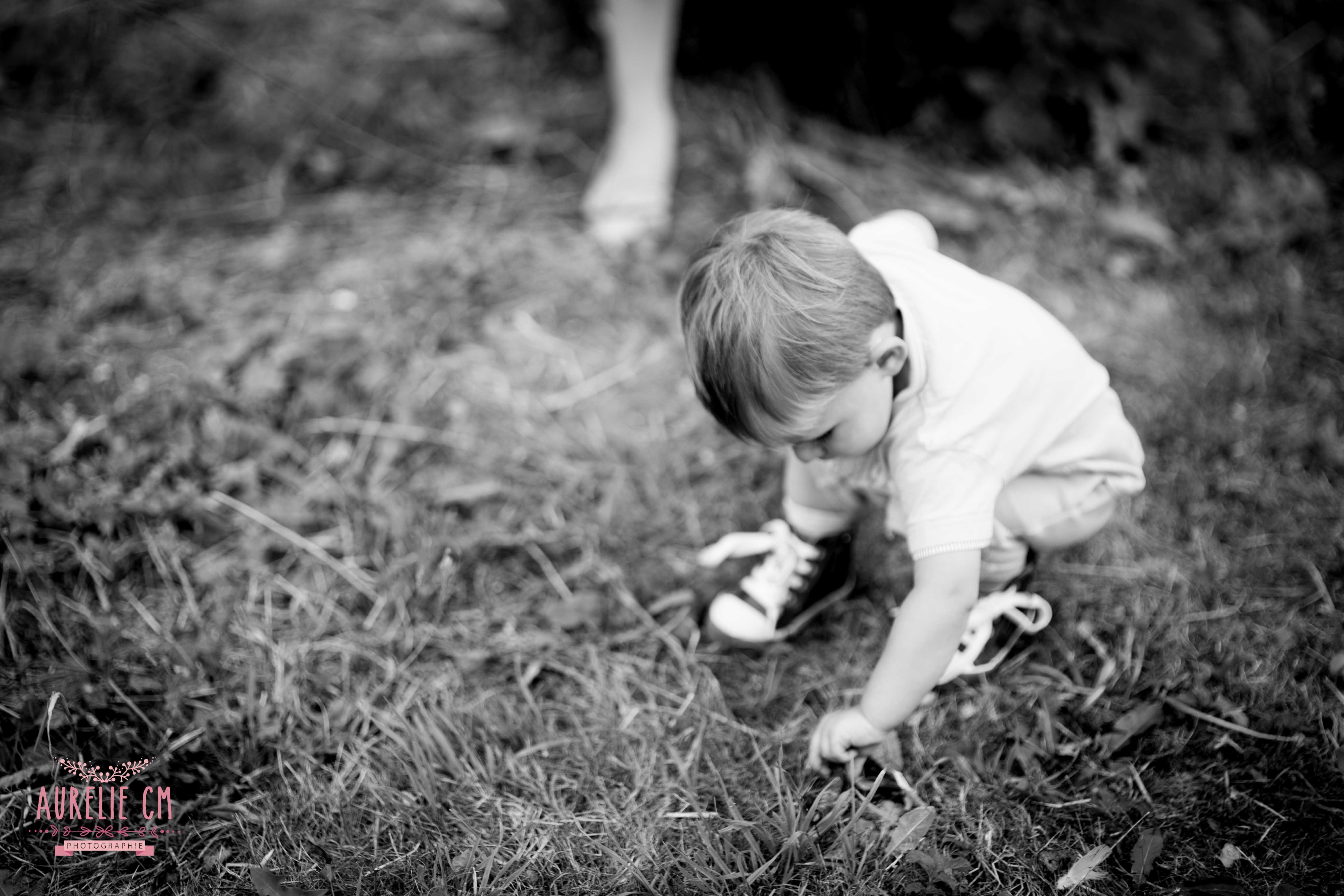 photographe le havre